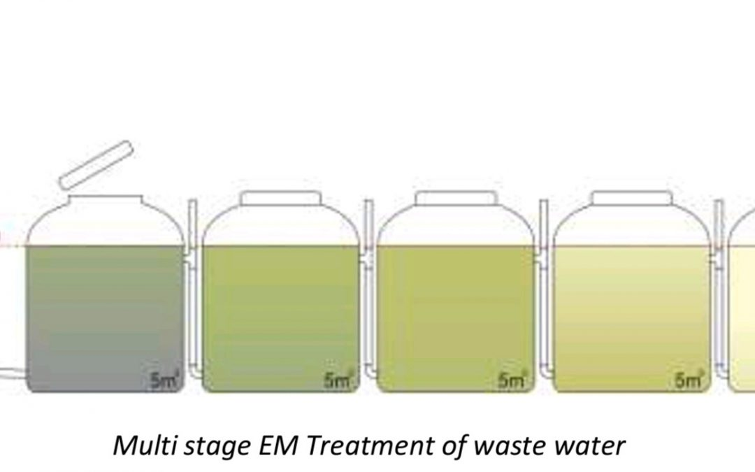 WASTE WATER TREATMENT FOR RE-USE IN AGRICULTURE