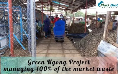 Green Ngong Project